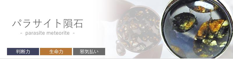 パラサイト隕石ってどんなもの?