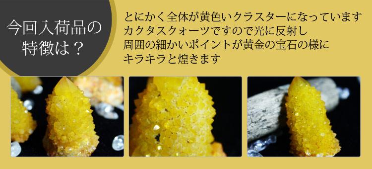 とにかく全体が黄色いクラスターになっています。カクタスクォーツですので光に反射し周囲の細かいポイントが黄金の宝石の様にキラキラと煌きます!